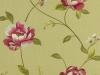 alderley-parsley