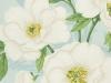 bloomsbury-duck-egg
