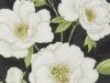 bloomsbury-ebony