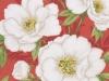 bloomsbury-red